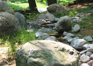 Pondless Stream Detail