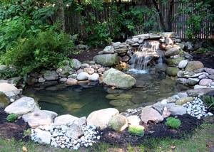 Pond Reconstruction